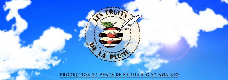 Les fruits de la plume, fruits bio et non bio
